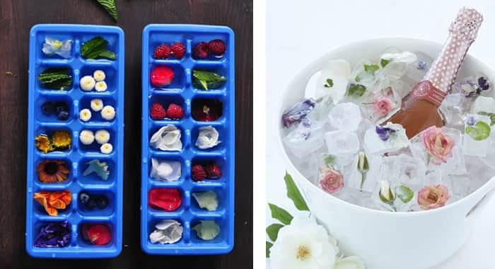 Ellen-Gonzales-como-servir-gelo-flores
