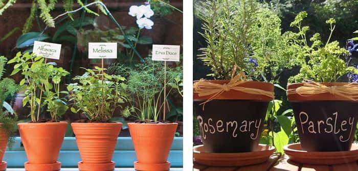 como-fazer-horta-em-apartamento-vasos